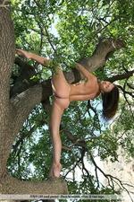 Melina Climbing A Tree Naked-06