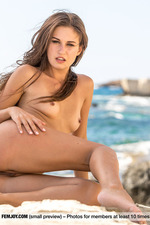 Beautiful Brunette Posing Naked By The Sea-04