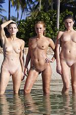 Naked sexy beach girls-15
