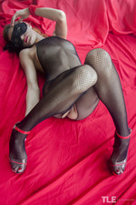 Pleasure In Fishnet-00