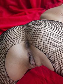 Pleasure In Fishnet